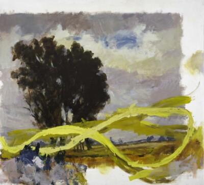 Vicky Neumann, 2010, La Sabana Con Garabato Amarillo, Acrilico y Oleo Sobre Tela, 150x165cm